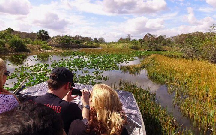 vip-everglade-wildlife